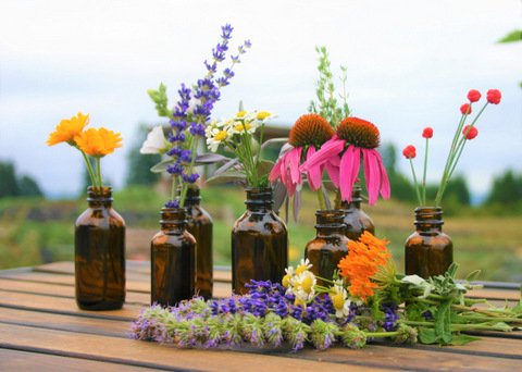 Liberty Natural Products - The Essential Oil Source